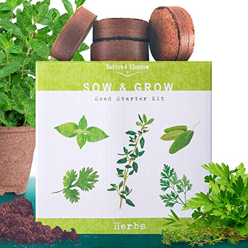 Nature's Blossom Herb Garden Kit. 5 Herbs To Grow From Seed: Basil, Cilantro, Sage, Parsley and Thyme Seeds, Ready For Planting. Beginner Gardeners Starter Set For Growing Indoor Plants. (Patio Herb Garden Ideas For)