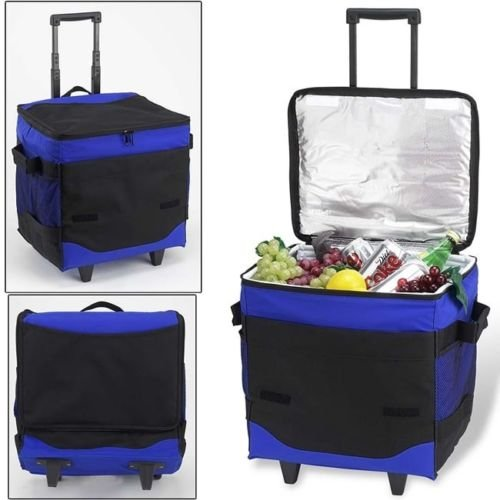 5b6d4deb5e90 Amazon.com: Collapsible Rolling Cooler Picnic Camping Beverage ...