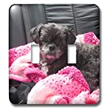 3dRose Jos Fauxtographee- Shih Tzu Llassappso Black - A sweet black doggie on a pink blanket in back seat of car - Light Switch Covers - double toggle switch (lsp_290448_2)