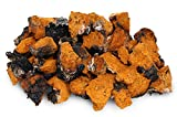 Chaga Small Chunks 8 oz (4oz X 2!) Organic 240+ Servings Wild Harvested Canadian Chaga – Only the Best – Chaga Pure and Simple – Mushroom Tea – Includes Black Outer Crust For Sale