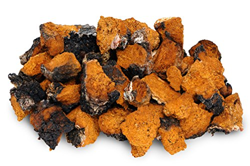 Chaga Small Chunks 8 oz - Organic 240+ Servings Wild Harvested Canadian Chaga - Only the Best - Chaga Pure and Simple - Mushroom Tea - Includes Black Outer Crust