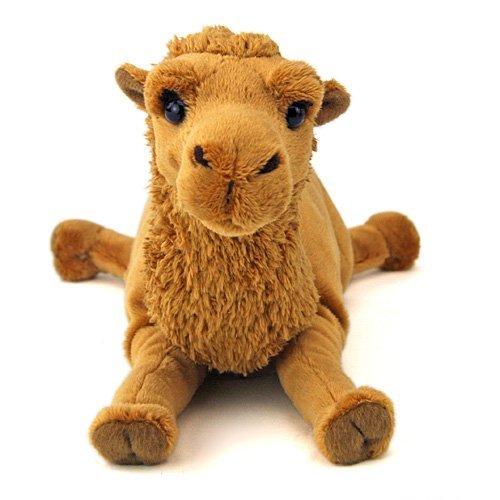 Stuffed Real Bactrian camel Sprawl Series