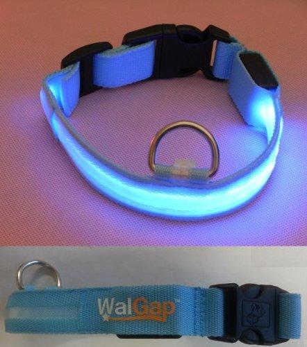 LED Flashing Lights Dog Collar