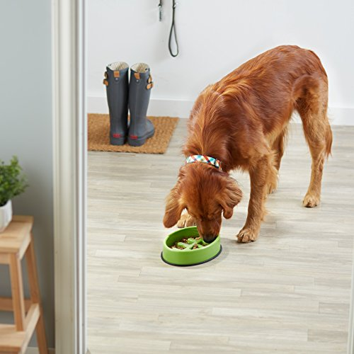 AmazonBasics-Honeycomb-Dog-Slow-Feeder-Bowl-for-Anti-Bloating