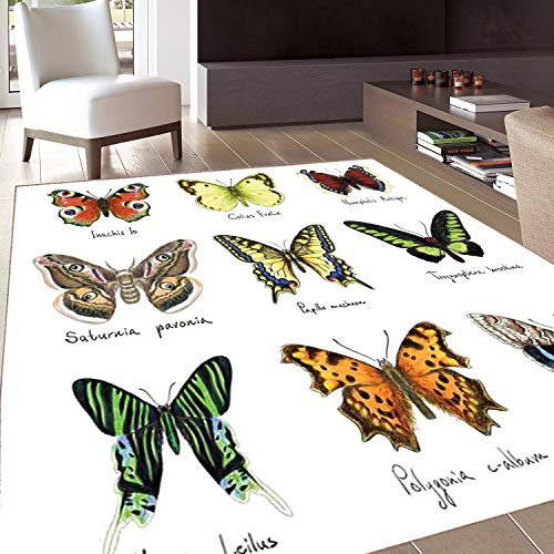 Rug,FloorMatRug,Butterfly,AreaRug,Watercolor Style Spring Insects Urania Helius Saturnia Pavonia Animal Design,Home mat,5'8