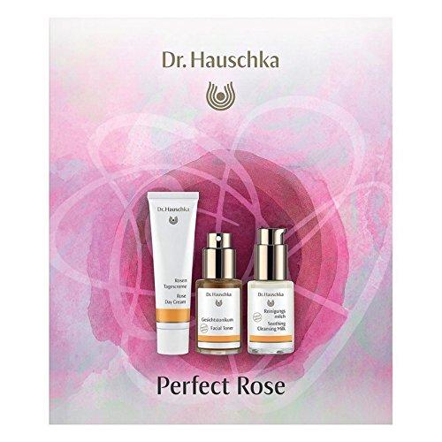 ハウシュカ完璧なバラ x2 - Dr. Hauschka Perfect Rose (Pack of 2) [並行輸入品] B07116XCGR