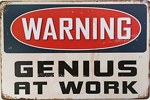 (ERLOOD Warning Genius at Work Tin Sign Wall Retro Metal Bar Pub Poster Vintage Decor 12 X 8)