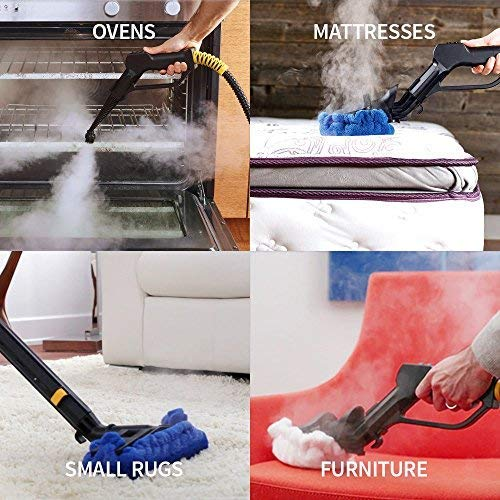best steam cleaner reviews consumer report