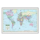 World Primary Mounted Framed Wall Map Frame Color: Silver