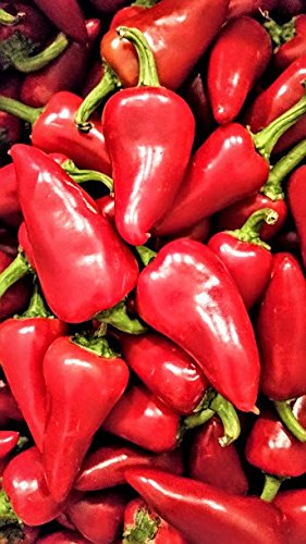 Fresh Red Fresno Chile Peppers 1 lb. (Jalapeno Chile)