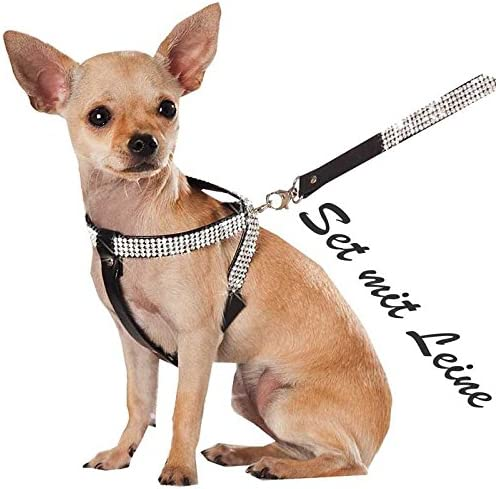 XS Negro con Cuerda Chihuahua perro brillantes Vajilla arnés del ...