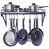 Amazon Price History for:ZESPROKA Kitchen Wall Pot Pan Rack,With 10 Hooks,Black