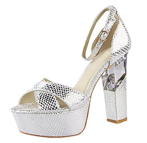 HooH Women's Peep Toe Transparent Platform Chunky High Heel Sandals Silver