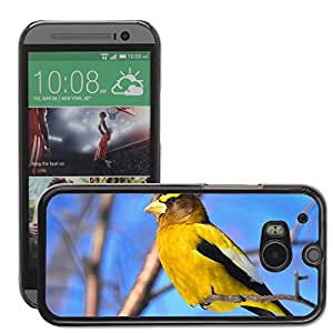 Super Stella Slim PC Hard Case Cover Skin Armor Shell Protection // M00148956 Bird Bright Colors Evening Grosbeak // HTC One M8