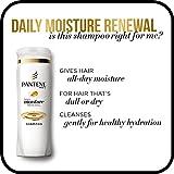 Pantene, Shampoo, Pro-V Daily Moisture Renewal
