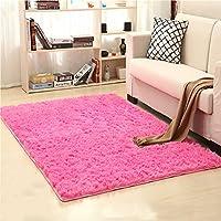 LOCHAS Soft Indoor Modern Area Rugs Fluffy Living Room...