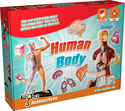 Educational Body Kit (Science4you - Human Body Kit- Educational Science Toy)