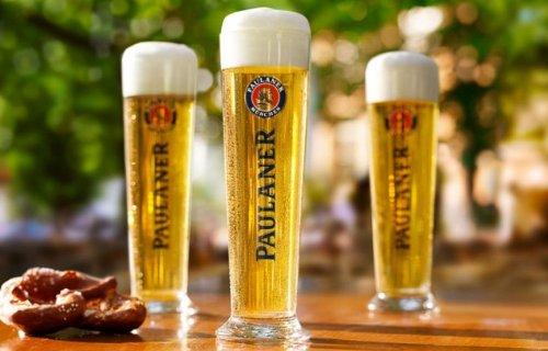 paulaner-03-liter-pilsner-glass-set-of-2