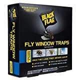 Black Flag HG-11017 Fly Window Trap, Ready-to-Use, 4-Count, Pack of 12
