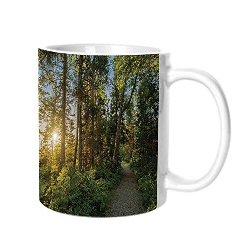 - Landscape Fashion Coffee Cup,National Park in Cape Breton Highlands Canada Forest Path Trees Tranquility Photo For office,One size