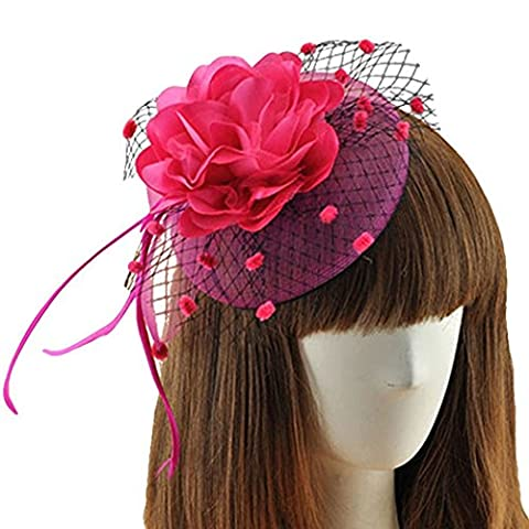 Coolwife Womens Fascinator Veil Flower Cocktail Tea Party Headwear (Rose)