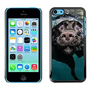 TopCaseStore / la caja del caucho duro de la cubierta de protección de la piel - Black Labrador Retriever Muzzle Dog - Apple iPhone 5C