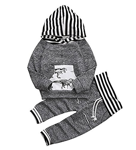 toddler-infant-baby-boys-dinosaur-long-sleeve-hoodie-tops-sweatsuit-pants-outfit-set-0-6-months-grey