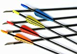 GPP 28'' Fiberglass Archery Target Arrows - Practice Arrows or Youth Arrows for Recurve Bow -Mix 4 Colors VANES 12 Pack