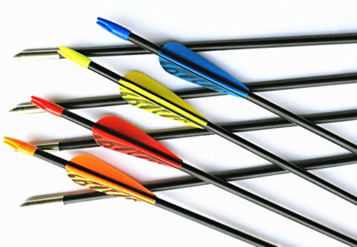 GPP 28″ Fiberglass Archery Target Arrows – Practice Arrows or Youth Arrows for Recurve Bow -MIX 4 COLORS VANES 12 Pack