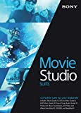 Sony Movie Studio 13 Suite - Upgrade (PC)