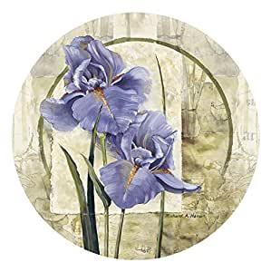 Thirstystone 4-Piece Iris in Bloom Coaster Set