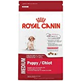 ROYAL CANIN HEALTH NUTRITION MEDIUM Puppy dry dog ...