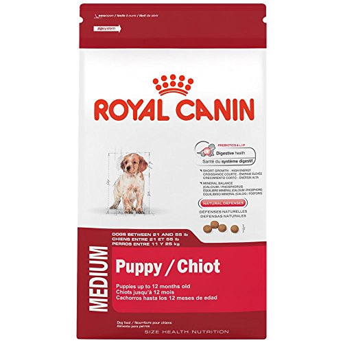 ROYAL CANIN HEALTH NUTRITION MEDIUM Puppy dry dog food, 30-Pound