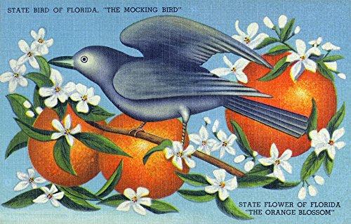 Florida - Mockingbird and Orange Blossoms; State Bird and Flower (12x18 Art Print, Wall Decor Travel Poster)