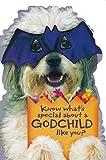 Hallmark Godchild Halloween Greeting Card