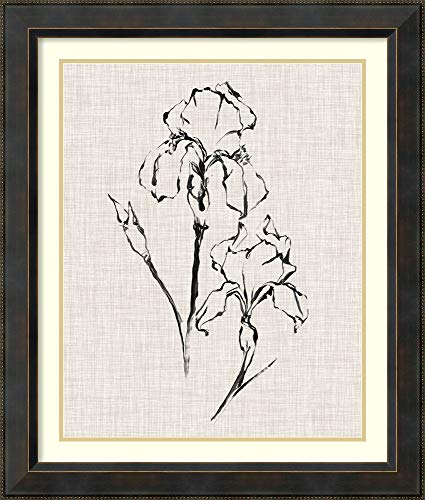 Framed Wall Art Print Floral Ink Study II by Ethan Harper 28.12 x 33.12 (Harper Floral Print)