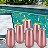 6 Pack Stemless Double Insulated Champagne Flute