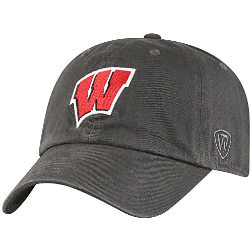 Elite Fan Shop Wisconsin Badgers Hat Charcoal - Charcoal Gray