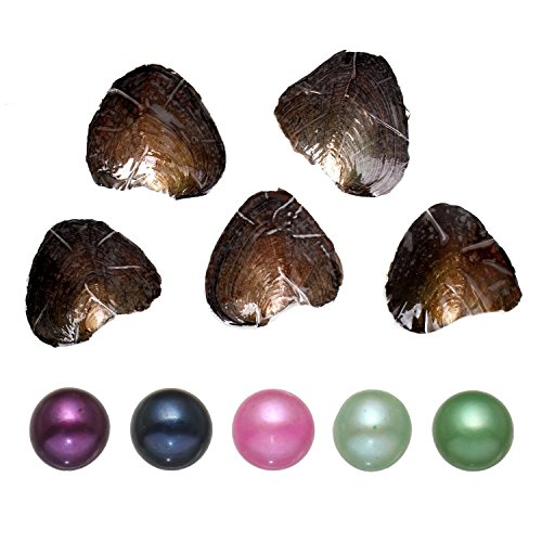 - 5PC Freshwater Cultured Love Wish Pearl Oyster with Pearl Inside Five Colors (7-8mm)