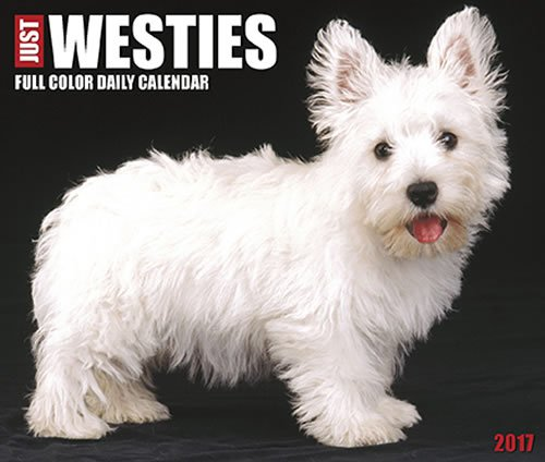 Quality Just Westies Daily Desktop Box Calendar Dogs 2017 {jg} Great Holiday Gift Ideas - for mom, dad, sister, brother, grandparents, gay, lgbtq, grandchildren, grandma.