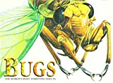 img - for Bugs: The World's Most Terrifying Insects book / textbook / text book