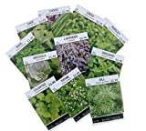 #1: Sow Right Seeds - Non GMO Heirloom Culinary Herb Seed Collection - Arugula, Basil, Chives, Cilantro, Cress, Dill, Lavender, Oregano, Parsley, Sage & Thyme; Full planting instructions; Easy to grow
