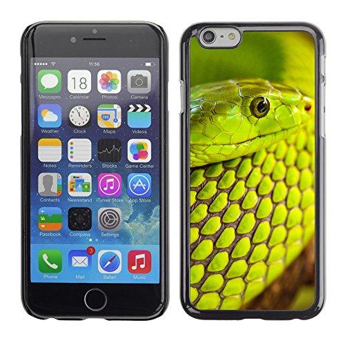 "Premio Sottile Slim Cassa Custodia Case Cover Shell // V00003383 vert serpent macro // Apple iPhone 6 6S 6G PLUS 5.5"""