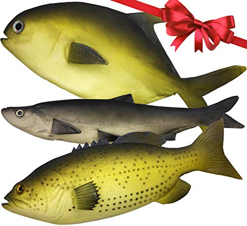 (3 Large Artificial Fish 2018- 12 to 16 in - Premium Quality - Realistic Fake Fish - Best Looking Real Fish Perfect for Food Display or Food Photography Prop -)