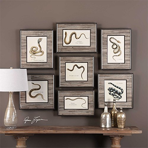 Uttermost Snakes Under Glass Wall Art - Set of 7