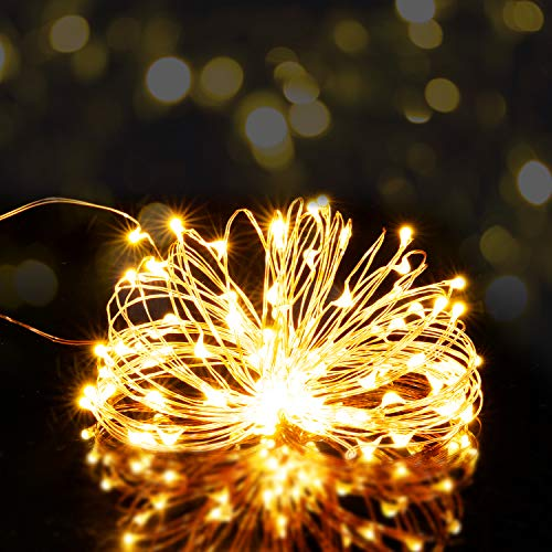 LED Fairy String Lights with USB Plug, 33ft 100LED Waterproof Copper Wire Starry Fairy Light for Indoor&Outdoor Decoration Party/Thanksgiving/Christmas (Warm-White Light)