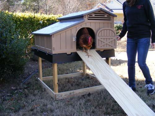 Formex snap lock standard chicken coop backyard hen house for Maintenance free chicken coop