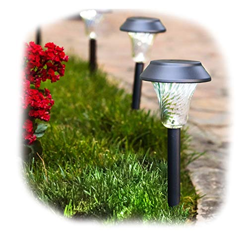 Solar Path Lights Set Of 12