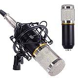 CAHAYA Condenser Microphone Studio Microphone for Professional Studio Broadcasting Recording Black-Silver