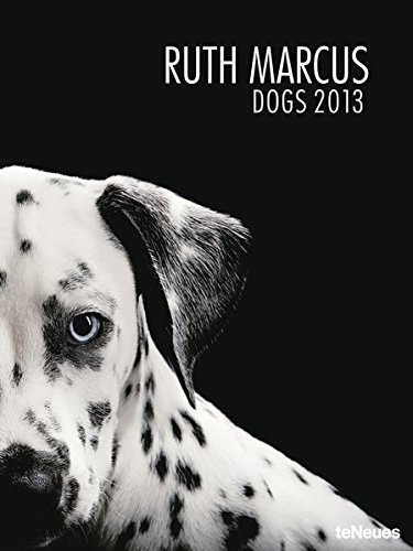 Dogs 2013